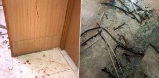 ದೆಹಲಿ: ಆಪ್ ಮುಖಂಡ ರಾಘವ್ ಚಡ್ಡಾ ಕಛೇರಿಯ ಮೇಲೆ ಬಿಜೆಪಿ ಕಾರ್ಯಕರ್ತರ ದಾಳಿ